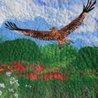 Red Kite Original Framed Artwork for Collection