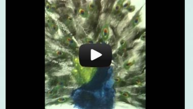 carre gallery video1